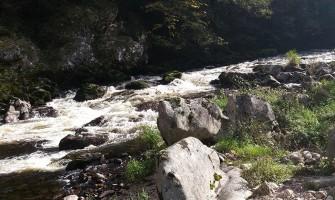 Gorges du Lignon Rivière Haute-Loire
