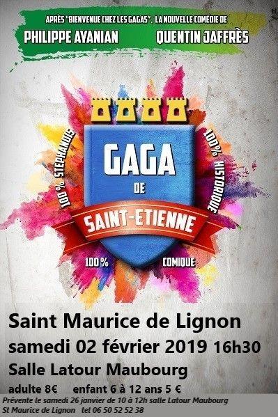 15233628347344_gaga-de-st-etienne_ter